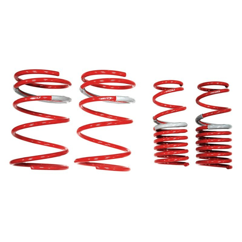 Tanabe DF210 Performance Lowering Springs For 2002-2004